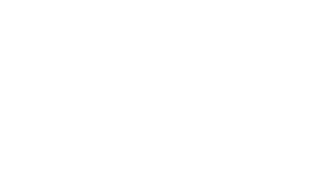 The Lash Collection